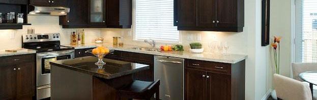 Elegant Kitchen designed by Dixon Construction